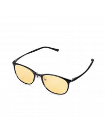 TS COMPUTER GLASSES