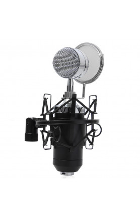 BM-8000 CONDENSER BROADCAST & RECORDING MICROPHONE WITH..