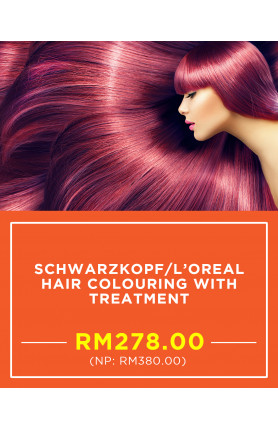 SCHWARZKOPF/L'OREAL HAIR COLOURING WITH TREATMENT