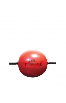 TORSOBALL TOTAL BODY TRAINING SYSTEM