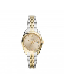 SCARLETTE MINI THREE-HAND DATE TWO-TONE STAINLESS STEEL..