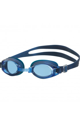 View Anti-fog Goggle